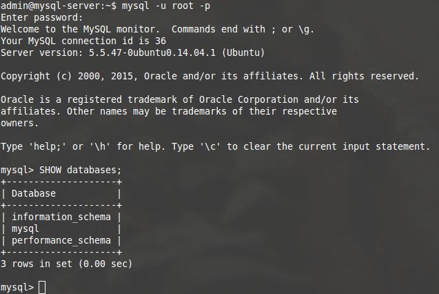 Salida en pantalla de una base de datos MySQL recién instalada
