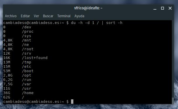 Salida de Disk Usage por la terminal